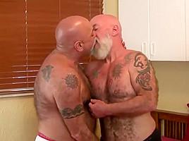 gay N139...